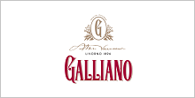 galliano-web